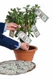 Verdienende winst royalty-vrije stock afbeelding