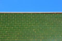 Verdissez le mur vitré de tuile et le ciel bleu Photo stock