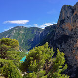 Verdon Stock Images