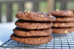 Verdoppeln Sie halb süße Schokolade und weißes Schokoladenplätzchen Lizenzfreies Stockbild