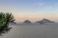Verdor agradable de la selva que cuelga hacia fuera sobre un acantilado con las islas y b Foto de archivo
