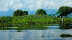 Verdor en Dal Lake Fotos de archivo libres de regalías