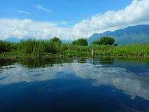 Verdor en Dal Lake-4 Foto de archivo libre de regalías