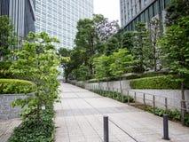 Verdor en Shiodome, Tokio, Japón foto de archivo