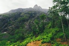 Verdor enorme contra el macizo de Trollveggen, Noruega imagen de archivo libre de regalías