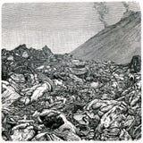 Verdraaide lava van de Vesuvius Stock Afbeelding