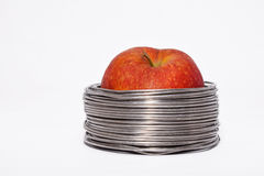 Verdrahteter Apfel: ganzer roter Apfel in den Spulen des Aluminiumdrahtes lokalisiert Lizenzfreie Stockfotos