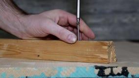 Verdrehen Sie die Schraube in einen Holzklotz stock footage