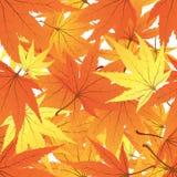 Verdrehte Blätter stock abbildung