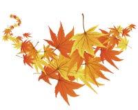 Verdrehte Blätter lizenzfreie abbildung
