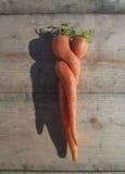 Verdrehte Karotten Stockfoto