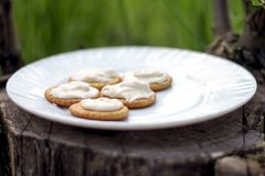 Verdun knapperige crackers met roomkaas op een witte plaat op een zonnige ochtend in het hout op een stomp Picknick in aard stock foto's