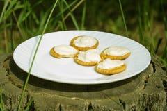 Verdun knapperige crackers met roomkaas op een witte plaat op een zonnige ochtend in het hout op een stomp Picknick in aard royalty-vrije stock foto