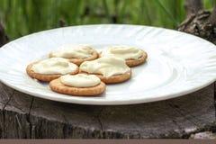 Verdun knapperige crackers met roomkaas op een witte plaat op een zonnige ochtend in het hout op een stomp Picknick in aard stock afbeelding