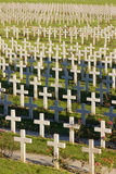 Verdun memorial cemetery Royalty Free Stock Images