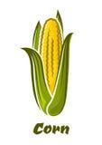 Verdura amarilla del maíz de la historieta en la mazorca Fotos de archivo libres de regalías