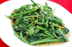 Verdura asiatica fritta Fotografia Stock