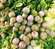 Verdura bollita, alimento sano, alimento pulito Immagine Stock