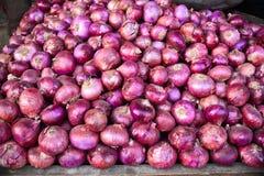 Verdura-cipolla indiana Immagini Stock