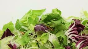 Verdura de ensalada que sigue el paquete