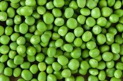 Verdura de la textura del fondo de los guisantes verdes Foto de archivo libre de regalías