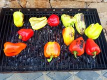 Verdura del barbecue fotografie stock libere da diritti