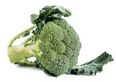 Verdura del broccolo isolata su fondo bianco Fotografia Stock