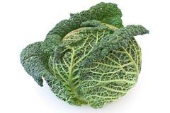 Verdura del cavolo Immagini Stock