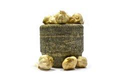 Verdura dell'aglio Immagine Stock Libera da Diritti
