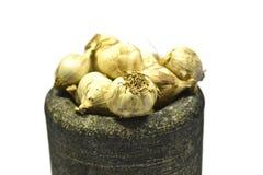 Verdura dell'aglio Fotografia Stock Libera da Diritti