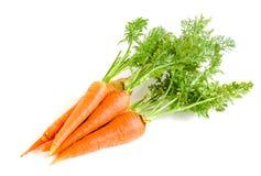 Verdura della carota con le foglie isolate su fondo bianco immagini stock libere da diritti