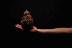 Verdura della tenuta della mano Fotografia Stock