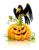 Verdura della zucca di Halloween con l'uccello nero del corvo Immagini Stock