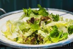 Verdura di insalata fresca Immagine Stock
