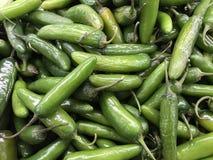 Verdura di verde dei prodotti freschi sulla vendita immagine stock libera da diritti