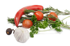 Verdura e spezia immagini stock