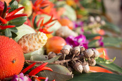 Verdura ed erba per alimento sano Fotografie Stock