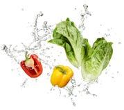 Verdura fresca Immagine Stock