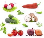 Verdura fresca Fotografia Stock