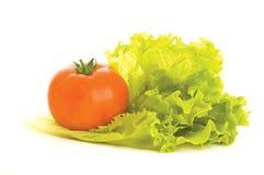 Verdura fresca Fotografia Stock Libera da Diritti