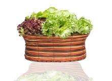 Verdura fresca in cestino Fotografie Stock Libere da Diritti