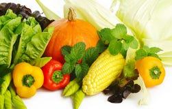 Verdura fresca con i fogli Fotografie Stock