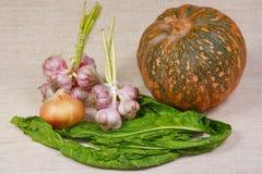 Verdura fresca dall'orto Immagini Stock Libere da Diritti