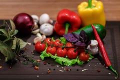 Verdura fresca e spezie Immagini Stock