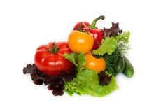 Verdura fresca isolata su una priorità bassa bianca Fotografie Stock