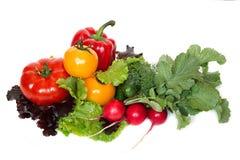 Verdura fresca isolata su una priorità bassa bianca Immagini Stock
