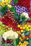 Verdura & frutta Fotografia Stock