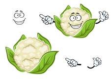 Verdura madura de la coliflor de la historieta con las hojas Fotos de archivo