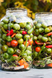 Verdura marinata Immagine Stock
