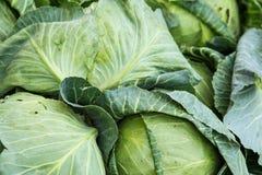 Verdura orgánica en el mercado de los granjeros Fotografía de archivo libre de regalías